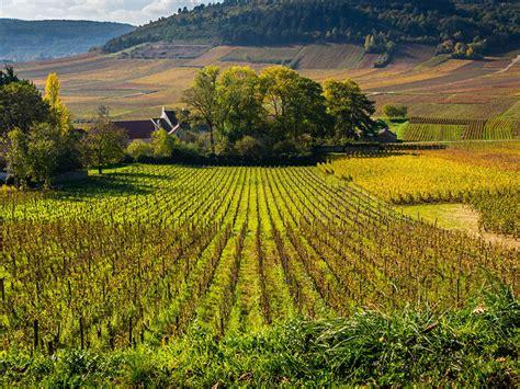 chambre d hote vignoble bourgogne chambres d 39 hôtes de charme bourgogne