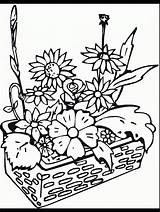 Coloring Pages Plants Flowers Garden Flower Cu Gardens Printable Print Flori Primarygames Desene Imagini Sheet Desert Begonia Colors Adults Pentru sketch template