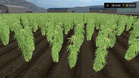 grow ls for weed cannabis crop mod farming simulator 2015 15 mod