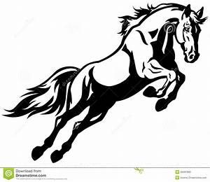 Pferdekopf Schwarz Weiß : pferd springen stockfotos bild 28497893 ~ Watch28wear.com Haus und Dekorationen