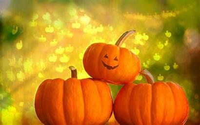 Halloween Wallpapers Pumpkin Pumpkins