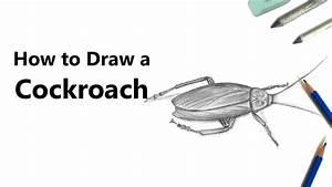 Apple Pencil Draw Diagram