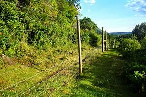 Electric Fence Surrounding Aberdare National Park  The