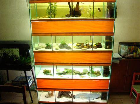 mes aquariums et mes batterie d levage ced72