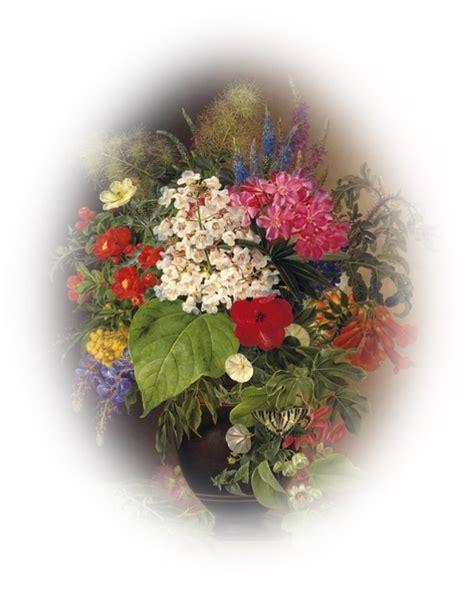 pot transparent pour orchidee orchidee pot transparent ou pas 28 images mes fleurs pots ou vases page 2 cultiver les
