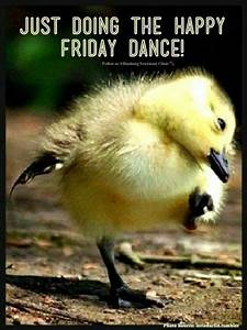 TGIF Happy Friday Dance Party - TGIF Dance Party in ...