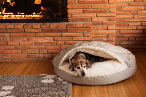 snoozer orthopedic cozy cave dog bed  colors  sizes