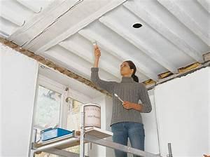Isoler Plafond Sous Sol : isoler un plafond comment isoler un plafond comment isoler un plafond par l 39 int rieur ~ Nature-et-papiers.com Idées de Décoration