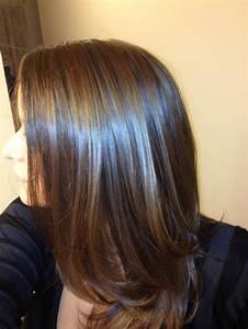 Light brown with blue highlights pixshark