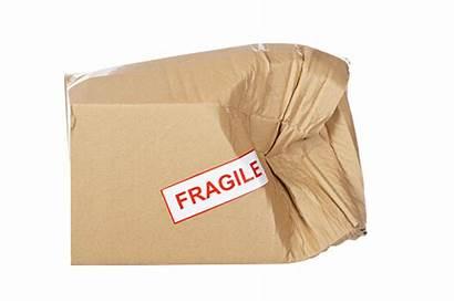 Damaged Box Cardboard Package Goods Defective Return