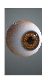 Realistic 3D eye model for Arnold Render - YouTube