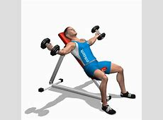 dumbbell flys on bench 28 images exercise tips