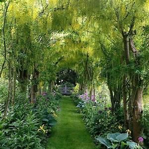 25+ best ideas about Garden oasis on Pinterest
