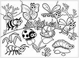 Insects Coloring Pages Print Children Printable Animals Theme Justcolor sketch template