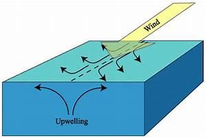 Equatorialupwellingdiagram