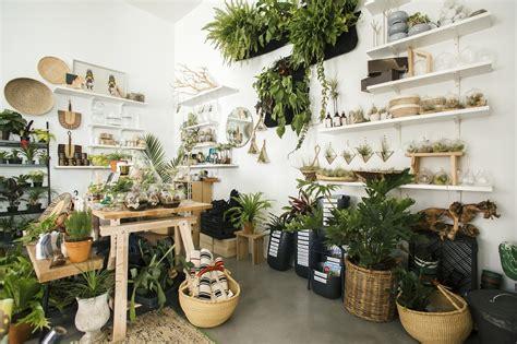 plant store the zen succulent a modern terrarium plant craft store
