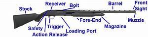Best Shotgun For Beginners  U0026 Home Defense