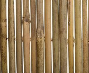 Kühlschrank B Ware Günstig : b ware bambus sichtschutzmatte 150x300 g nstig online kaufen ~ Frokenaadalensverden.com Haus und Dekorationen