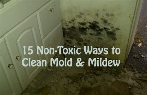 15 effective home remedies to get rid of mold and mildew