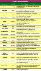 Welche Pflanzen Vertragen Sich Tabelle : giftige pflanzen fur katzen ~ Lizthompson.info Haus und Dekorationen
