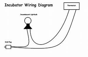 Incubator Wiring Diagram