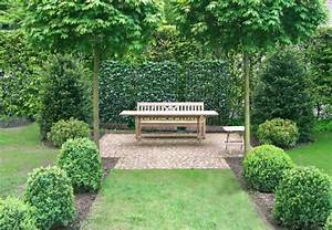Garten Planen Beispiele : ein baum f r den garten obi wei rat ~ Lizthompson.info Haus und Dekorationen