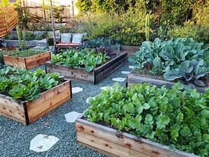 Raised Garden Beds Vs  In