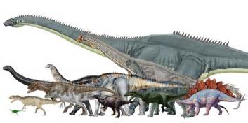There must be at least...Torvosaurus Vs Tyrannosaurus