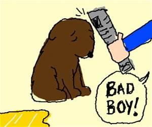 Kid gets angry at his dog
