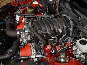 Custom Engine Bay Pics Gs400 - Clublexus