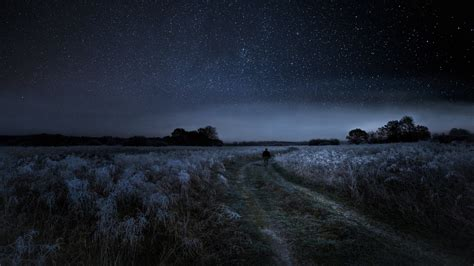 rural frosty pathway   starry sky hd wallpaper
