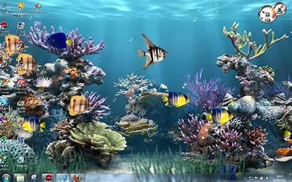 Gambar Bergerak Untuk Aquarium Pc Keren Komputer