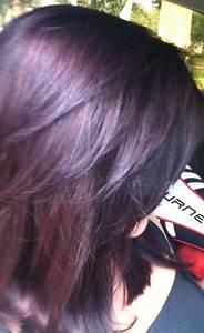 Plum highlights, Brown hair and Schwarzkopf hair colour on ...