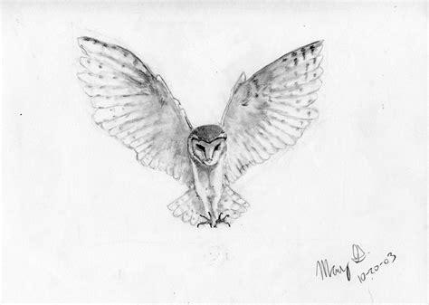 flying barn owl drawing easy flying owl drawing
