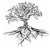 Pin Von Abolovi Auf Tattoo  Lebensbaum Baum