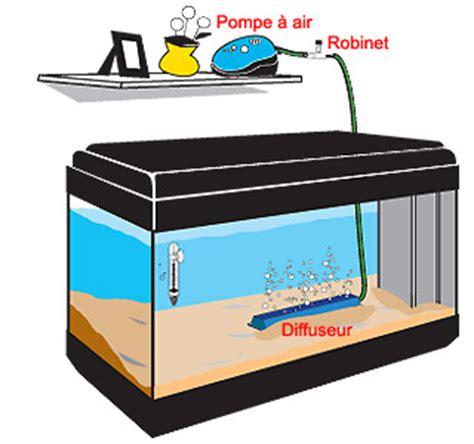 importance de l oxyg 232 ne en aquaponie effet venturi aquaponie