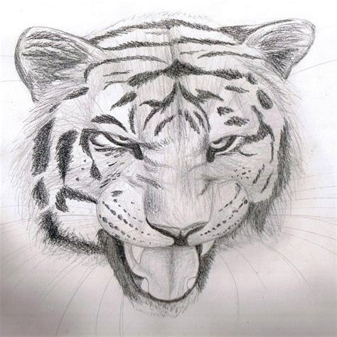 cool easy pencil drawings design images pencil