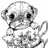 Coloring Pages Dog Adults Pug Printable Colouring Dogs Adult Sheets Animal Teacup Bestcoloringpagesforkids Getdrawings Puppies Whitesbelfast Hobi Pusat Getcolorings Drawing sketch template