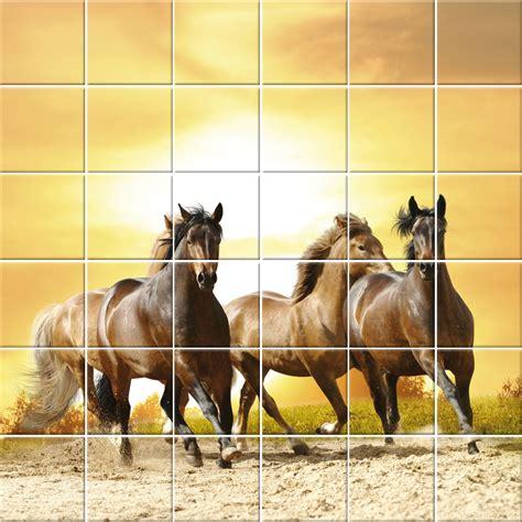 adesivi decorativi per piastrelle adesivi follia adesivo per piastrelle cavallo
