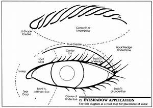 Eye Shadow Application Diagram