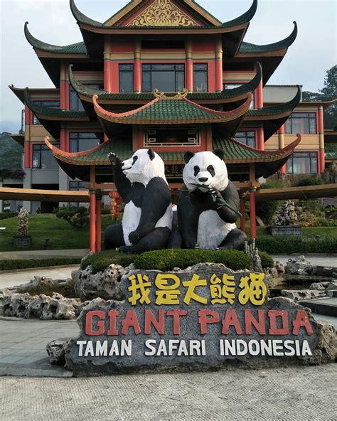 wisata  istana panda taman safari  menakjubkan