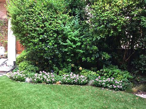 giardini con aiuole bordure per aiuole per giardino verona officina