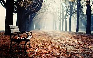 Park Benches Wallpaper and Background   1680x1050   ID:410701