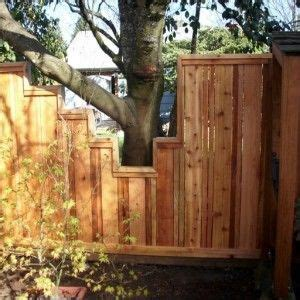 building  fence  trees google search small