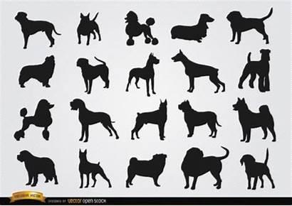 Dog Breeds Several Figures Vector