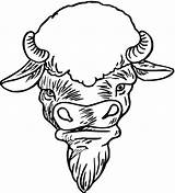 Coloring Buffalo Face Drawing Bison Wild Wings Clipartmag sketch template