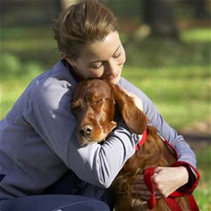 Do Dogs Like to Be Hugged? - Nuzzle - Your GPS Pet Tracker