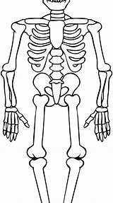 Skeleton Coloring Pages Human Bone Pirate Getcolorings Printable Funny Pa sketch template