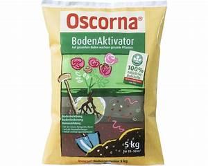Oscorna Bodenaktivator Erfahrung : bodenaktivator oscorna 5 kg bei hornbach kaufen ~ Lizthompson.info Haus und Dekorationen