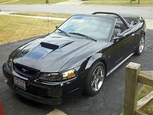 MC_killer4 2000 Ford MustangGT Convertible 2D Specs, Photos, Modification Info at CarDomain